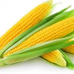 Free Corn Coupons